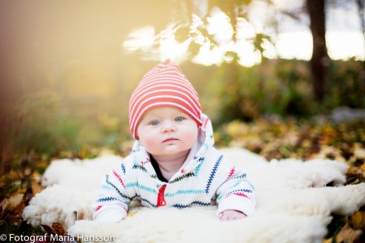 MariaHansson_15102013_00015-2